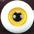 D24 - 16mm DK Egg Shell