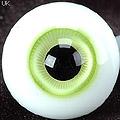 D24 - 16mm Vivid Green