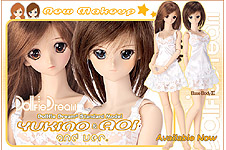 DD/MDD Base Body & Standard Model